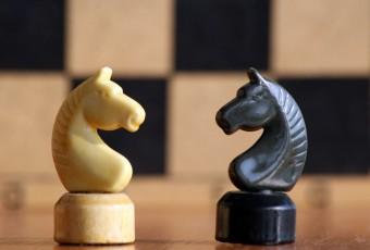 Шахматы с 5 до 10 лет